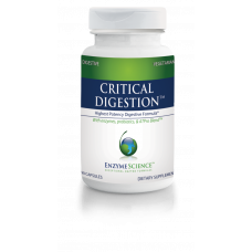 Critical Digestion - 90 capsules