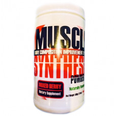 Muscle Synthesis
